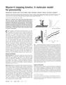 Myosin-V stepping kinetics