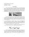 Lithostratigraphy