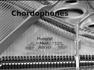 Lecture Notes - Chordophones