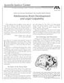 Adolescence, Brain Development and Legal Culpability
