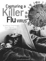 Capturing a Killer Flu Virus