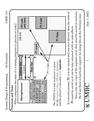 CMPE 310 OS Essentials