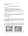 Introduction to Sedimentation and Stratigraphy