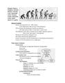 Animals (7) - Human