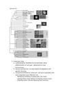 Lecture 13 (1) bio 200