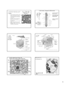 Plant cells: components and functions