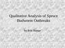 Qualitative Analysis of Spruce Budworm Outbreaks