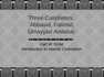 Three Caliphates - `Abbasid, Fatimid, Umayyad Andalus
