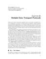 CHAPTER 20 Reliable Data Transport Protocols