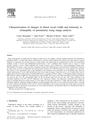 Characterization of changes in blood vessel width and tortuosity in retinopathy of prematurity using
